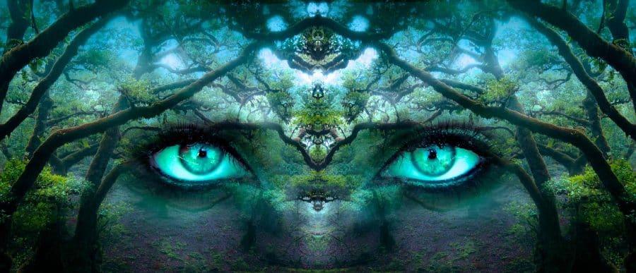 teoría del biocentrismo